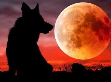 Súper Luna de Sangre de Lobo ocurrirá este mes, ¿Será señal de guerra en Medio Oriente?