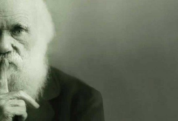 Británicos no creen en Darwin, dice una nueva encuesta