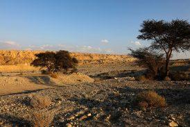 Caverna de sal es descubierta en Sodoma, donde mujer de Lot se volvió estatua de sal